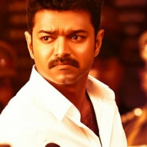 Political views on Mersal